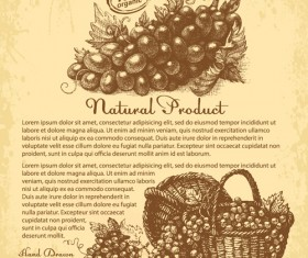 Hand drawn grapes background vintage vector 02