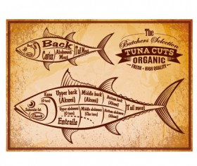Vintage tuna cuts labels vector