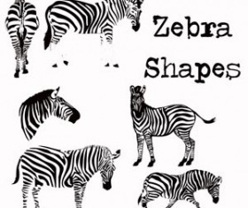 Zebra Photoshop shapes