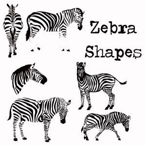 Zebra Photoshop shapes