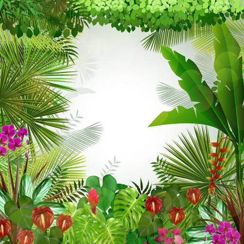 vector scenery tropical - photo #1