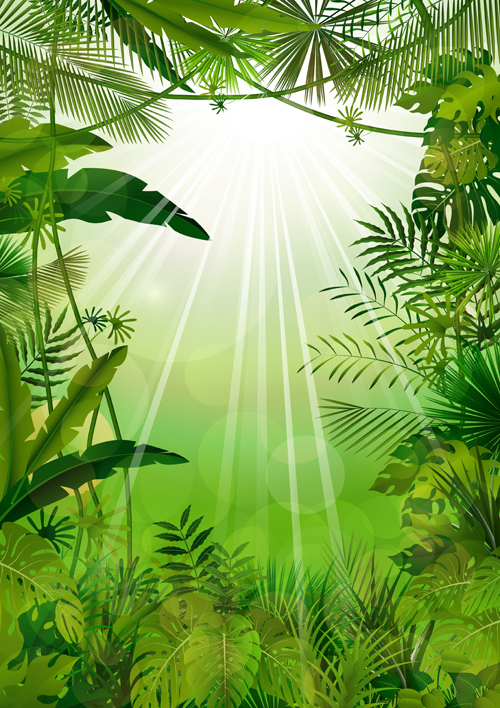 vector scenery tropical -#main