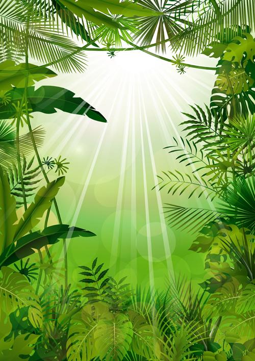 vector scenery tropical -#main