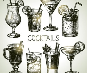 Hand drawn cocktail vector grphics