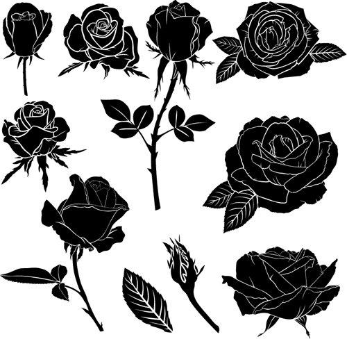 Black rose vector illustration free download