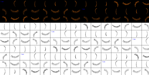 Eyelash brushes - Photoshop Brushes free download