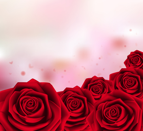 Red rose with pink background vector 01 - Vector Background, Vector ...