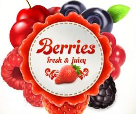 Berries label vector