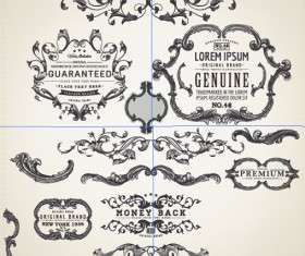 Decor frame with ornaments elements vintage vector 02
