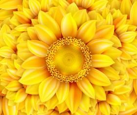 Gloden sunflower vector background 02