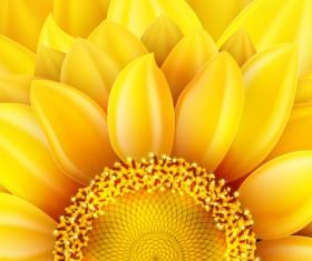 Gloden sunflower vector background 03
