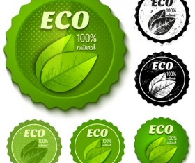 Green and black Eco badges vector