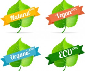 Green leavef with Eco labels vector