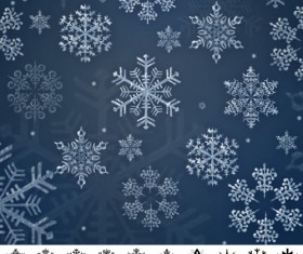 Set of Snowflakes Brushes abr