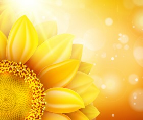 Sunflower flower with bokeh vector background 01