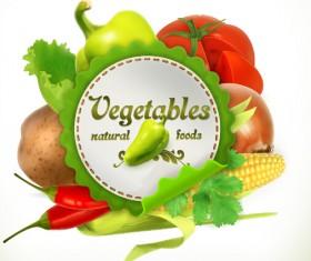 Vegetables vector label