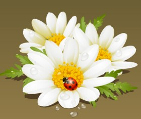 White flower and ladybug vector material