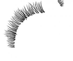 3 Kind eyelash photoshop brushes