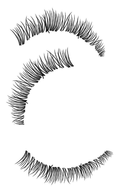3 Kind Eyelash Photoshop Brushes Free Download