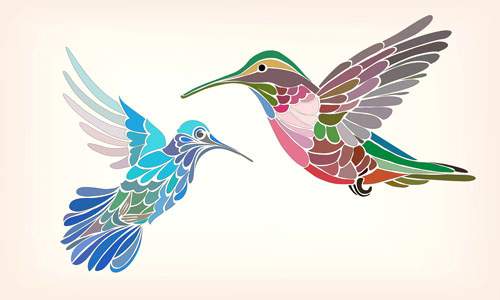 floral pattern hummingbird vector 01