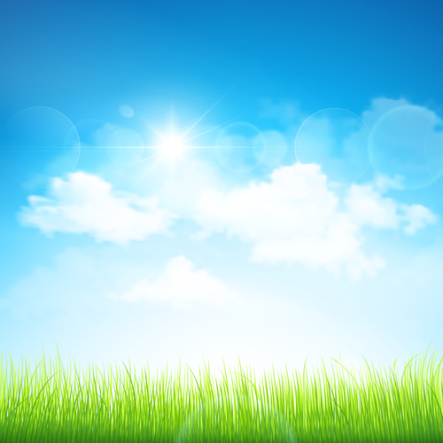 Grass with blue sky spring vectors 10 - Vector Background ...