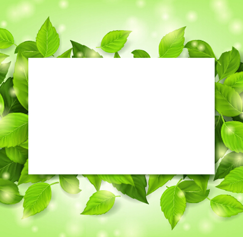 Green Frames And Borders | www.pixshark.com - Images ...