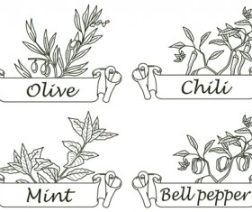 Hand drawn herbs and spices labels vector 07