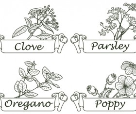 Hand drawn herbs and spices labels vector 08