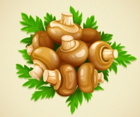 Mushrooms and parsley leaves vector