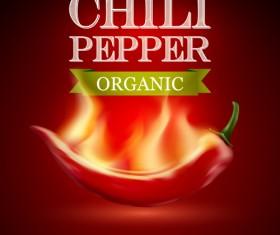 Organic chili pepper poster vector 02