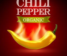 Organic chili pepper poster vector 03