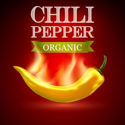 Organic chili pepper poster vector 03