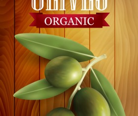 Organic olives with wooden background vector 01