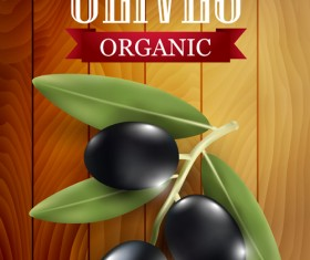 Organic olives with wooden background vector 02