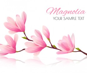 Pink magnolia flower background vector 01