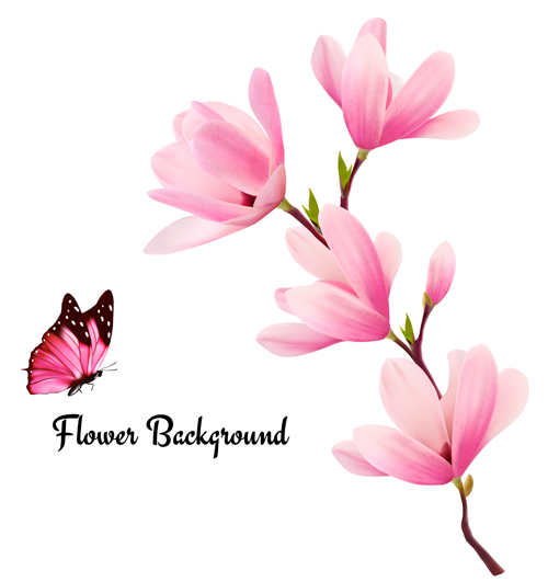 Pink Magnolia Flower Background Vector 02 Free Download