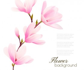 Pink magnolia flower background vector 04