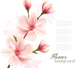 Pink magnolia flower background vector 05