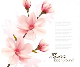 Pink magnolia flower background vector 05