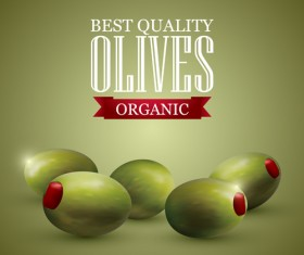 Quality organic olives vector graphics 01