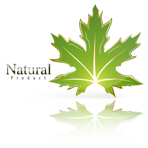 Shiny green leaf with nature logo vector 03