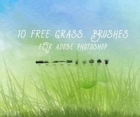 10 Kind Grass Photoshop Brushes