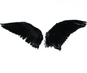 2 Kind wing photoshop brushes