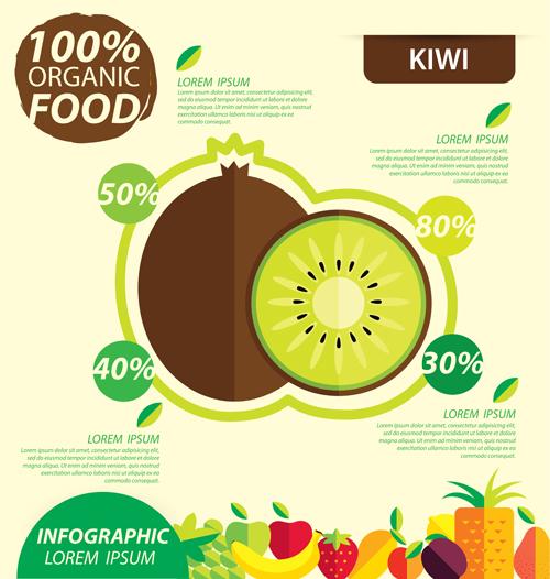 Flat fruits infographic vectors template 05