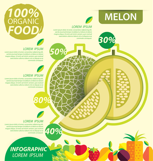 Flat fruits infographic vectors template 09