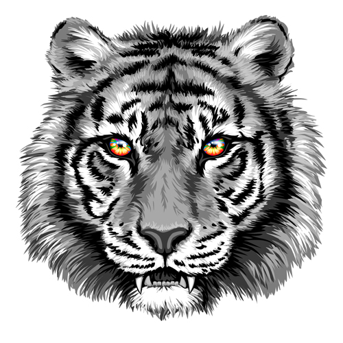 Gray tiger head vector