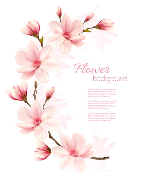 Pink Magnolia Flower Vector Background Free Download