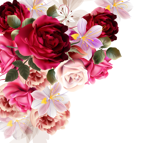 Roses and huasinth flowers vector illustration free download