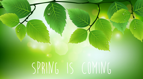 Spring sunlight with green leaves vector background 03 - Vector ...