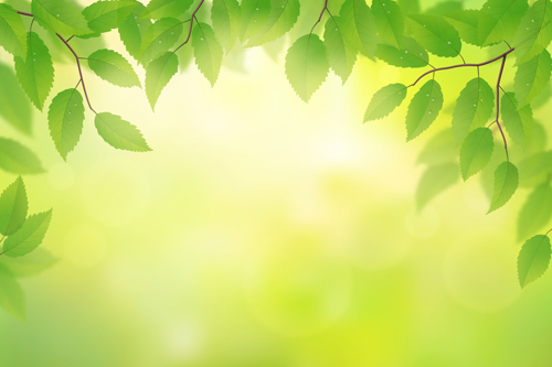 Spring sunlight with green leaves background vector 01 - Vector ...